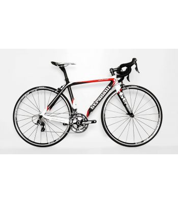 Red Pro Trebisacce Full Carbon Road Bike with Shimano Ultegra 8000 11 Speed. DT Swiss R24 Spline Wheel Set